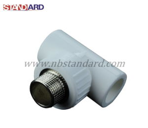 PPR Tee Fitting with Brass Male Thread for PPR Pipes pictures & photos