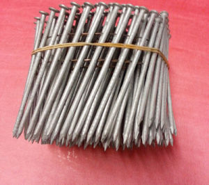 Coil Nail Hot Dipped Galv, Barbed Shank (CN-HDG) pictures & photos