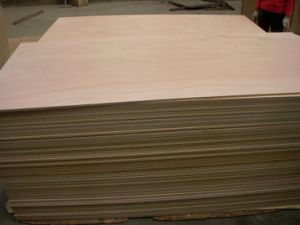WBP Plywood (1220*2440) pictures & photos