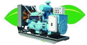 200kw Cummins Biogas Generator Set (200GF-SZ)