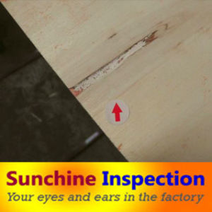 Professional Inspection Services in Shandong, Linyi, Zaozhuang, Heze, Jining pictures & photos