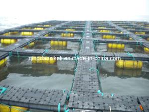 Live Fish Farm Aquaculture Net Cage pictures & photos
