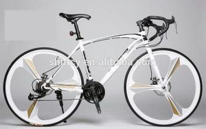 26inch Magnesium Alloy Wheel Racing Bike, Road Bike Sh-Rac009 pictures & photos