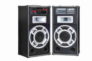 10′′ Inch Speaker Professional Sound Audio F6210s pictures & photos