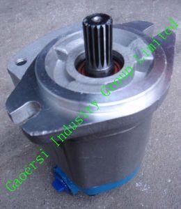 Steering Oil Pump, Hydraulic Pump (QC18)