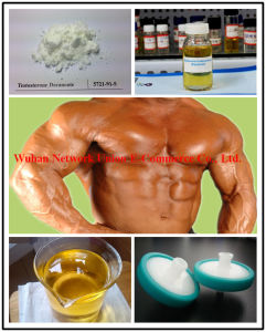Injectable Semi-Finished Oily Steroid Liquid USP Equi Test 450mg/Ml pictures & photos