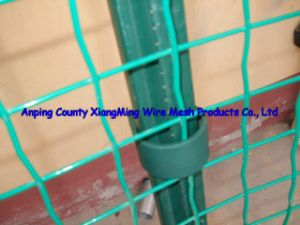 Hot Sale PVC Coated Euro Fence (XM-Euro) pictures & photos