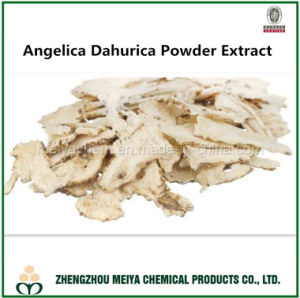 100% Natural Angelica Dahurica Root Powder Extract with Imperatorin HPLC pictures & photos