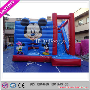 Popular Amusing Castle Inflate Combo, Inflatable Castle, Bounce Castle pictures & photos