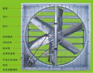 Axial Fan -37