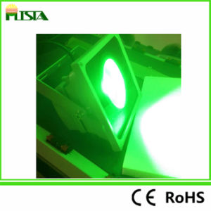 Green Light LED Flood Light Landscape Light/ Park Light