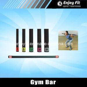 4 Lbs. Mini Gym Bar in Rubber End Cap