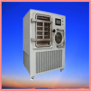 Vacuum Freeze Dryer Drying Banana, Strawberry pictures & photos