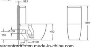 Two Piece Ceramic Toilet Washdown Toilet Water Closet Wc 10100 pictures & photos