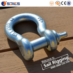 Screw Pin Galvanized Drop Forged Us Bow Shackle pictures & photos