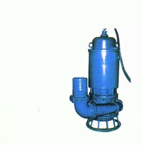Hot Sale Submersible Slurry Pump, Vertical Pump pictures & photos