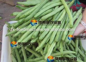 Green Bean Top and Tail Cutting Machine pictures & photos