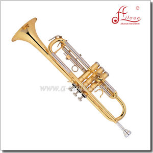 Intermediate Yellow Brass Body Bb Trumpet Horn with Case pictures & photos