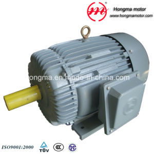 Hmy Three Phase Asynchronous Induction High Efficiency Electric Motor pictures & photos
