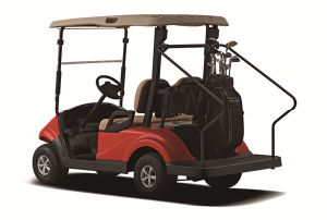 Wholesale CE Approved Electric Golf Cart with Solar Panel From Dongfeng Motor pictures & photos