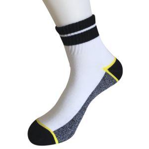 Half Cushion Poly Fashion Quarter Stripe Socks (JMPQ05) pictures & photos