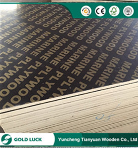 Melamine Faced E1 Grade Marine Plywood for Construction 1220X2440mm pictures & photos