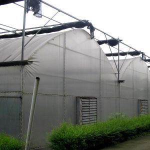 Multi-Span Greece Material Plastic Film Greenhouse for Flowers/Vegetable/Fruits pictures & photos