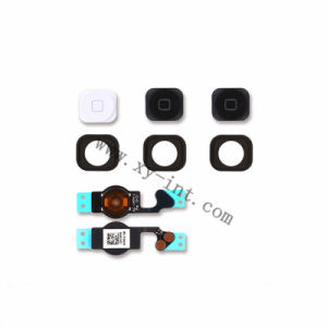Home Button with Flex Cable for iPhone 5 Home Button Best Price pictures & photos