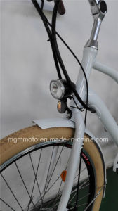 Classical Model Beach Cruiser Fat Tire City Electric Bike pictures & photos