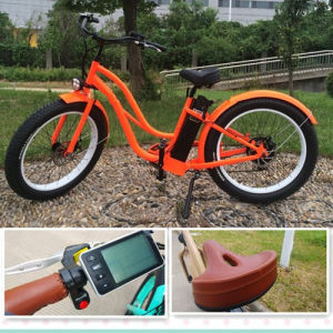 New Model Mountain Electric Sport Bike 250W Fat Tire pictures & photos