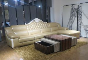 European Style Living Room Genuine Leather Sofa (SBL-9194) pictures & photos