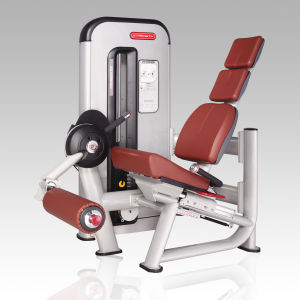 Commercial Leg Extension Gym Equipment/Leg Exerciser Fitness Machine pictures & photos