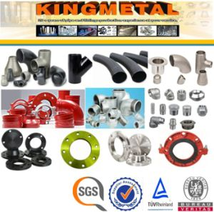 Plumbing Products Carbon/Stainless Steel Water Plumbing Pipe Fittings and Accocessories pictures & photos