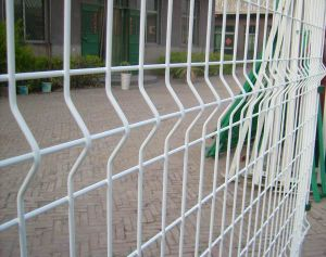 Welded Wire Mesh Euro Fencing in 50X200mm Hole Size pictures & photos