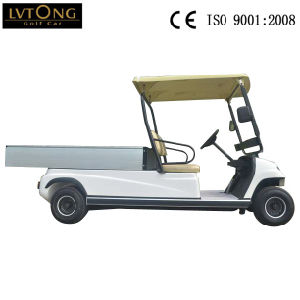 2 Seaters Green Color Electric Cargo Car pictures & photos