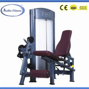 Commercial Leg Extension Machine / Exercise Machine / Gym Machine pictures & photos