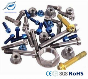 Titanium Machined Nonstandard and Standard Fastener