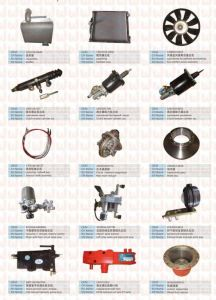 Sinotruck HOWO Spare Parts Camshaft Gear Parts (Vg14050053) pictures & photos