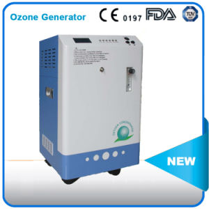 Ozone Generator for Cleaning From Lomgfian Company. China pictures & photos