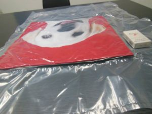 Vacuum Compressed Bag Pillow Packing Machine pictures & photos