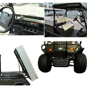 Hot Product! Golf Buggy Cargo Truck pictures & photos