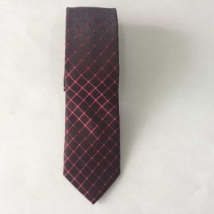 New Design Dotty Fashion Woven Silk Ties pictures & photos