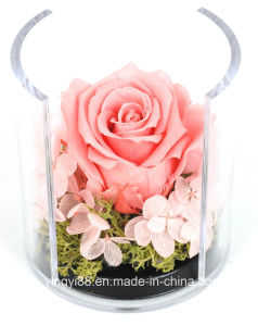 Acrylic Luxury Flower Box Professional Manufacturer pictures & photos