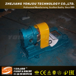 2cy Lubricating Oil Transfer Gear Pump with Exxd Motor pictures & photos