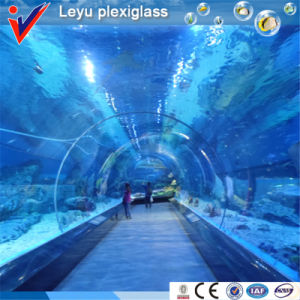 Large Acrylic Sheets for Aquarium Tunnel pictures & photos