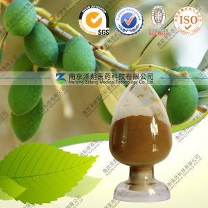 Natural Extract Powder Bulk 20% Oleuropein Olive Leaf Extract pictures & photos