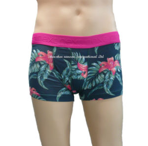 Custom Men′s Printing Boxer Briefs/ Underwear pictures & photos