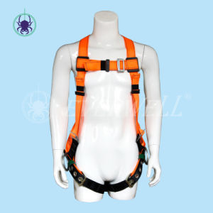 Full Body Harness, Safety Harness, Seat Belt, Safety Belt, Webbing with Three-Point Fixed Mode (EW0119BH)