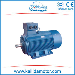 Y2 315kw Machinery Three Phase Induction Motors pictures & photos