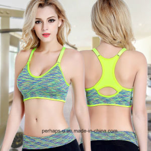 Fashion Clothes Women Fitness Bra Sport Bra pictures & photos